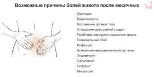 Болит грудь и живот после месячных