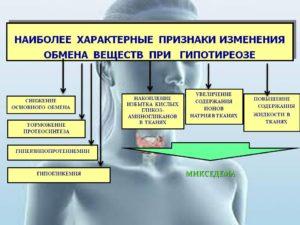 Гипотиреоз: сниженный обмен веществ, прием лецитина и спирулины