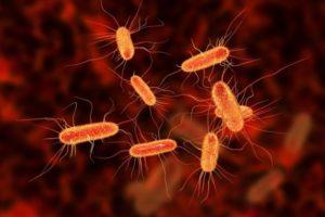 Escherichia coli в горле 10 в 6 степени
