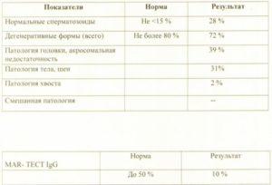 Спермограмма. Дегенеративные формы