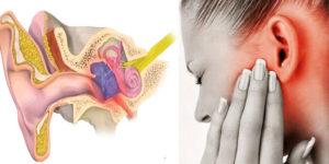 Заложен нос и уши болит горло и затылок температуры нет