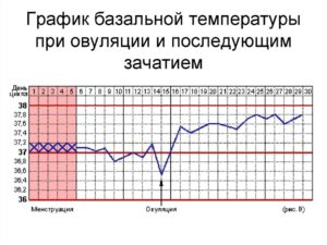 Базальная температура, низка разница температур