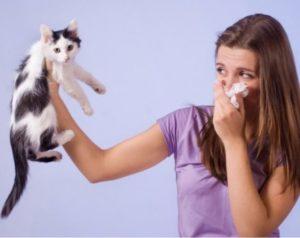 Запах мочи похожий на кошачий