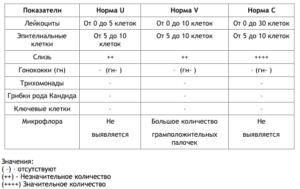 Расшифровка мазка на гонококки и трихомонады