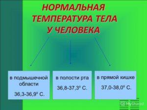 Температура тела днём 37,2 горит лицо