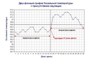Почему не поднимается базальная температура после овуляции?
