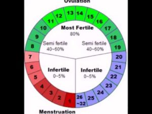 Возможна ли беременность на 4 день месячных