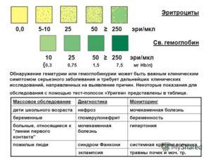 Гемоглобин и эритроциты в моче