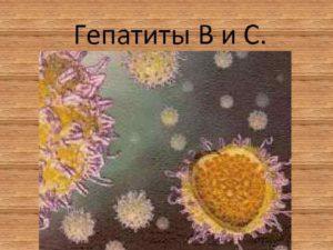 Гепатит в и ЭКО