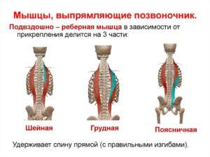 Патологическое образование в мягких тканях паравертебральной мышцы спины