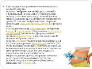 Беременность чем отличается акушерский срок от эмбрионального