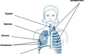 Остановка и ощущение перехватывания дыхания