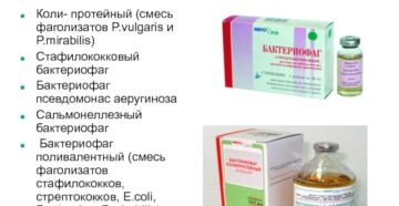 Стрептококк, стафилококк, бактериофаг